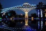 پل طبیعت، نمادی زیبا و مدرن در پایتخت